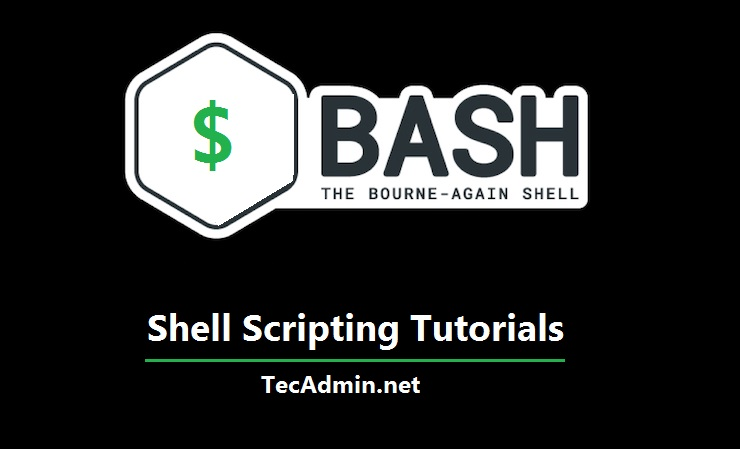 Bash Scripting Tutorial