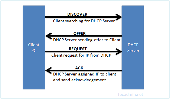 DHCP Protocal