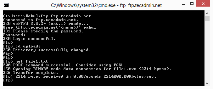 ftp-download-single-file