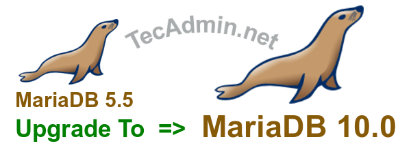 MariaDB Upgrade 5.5 to 10.0