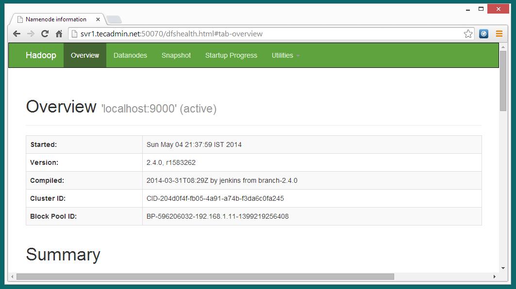 hadoop-2.4.0-dfs