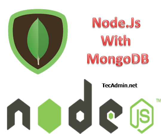 Connect Node.js Application with MongoDB