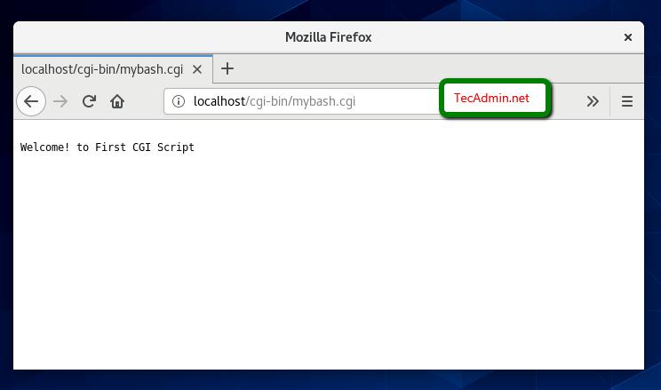Apache CGI Script