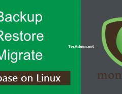 MongoDB Database Backup