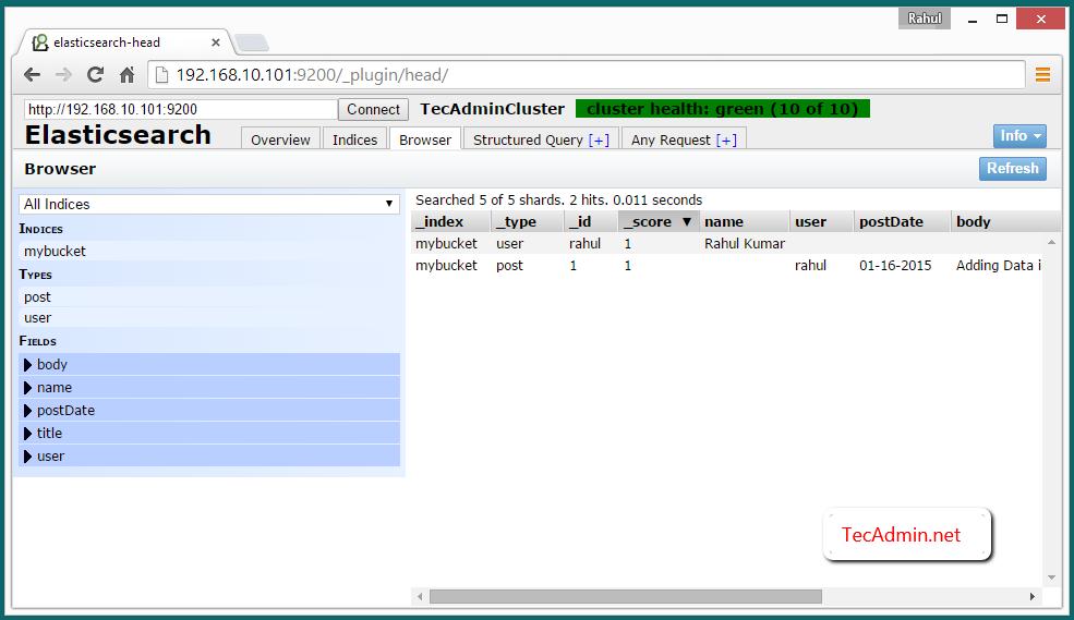 data in elasticsearch cluster