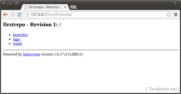 Subversion First Repo