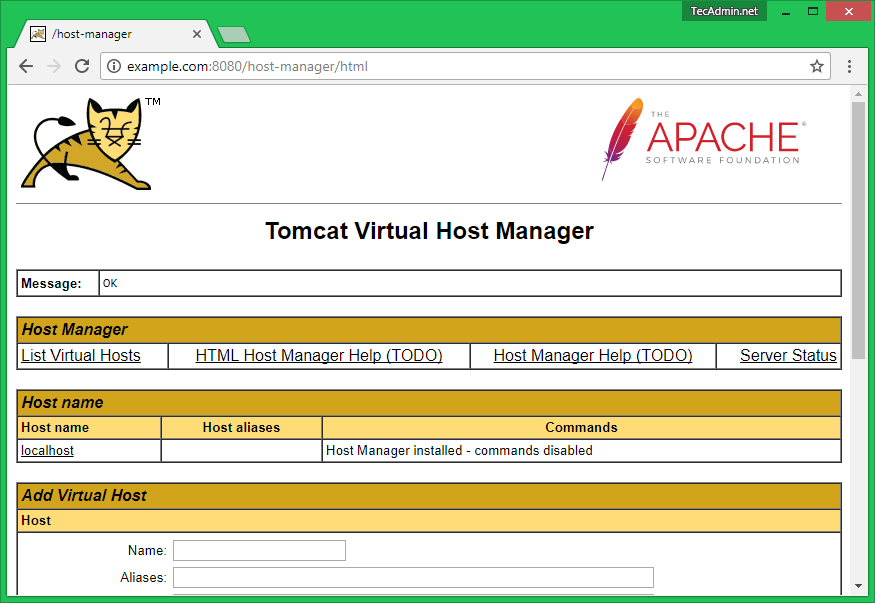 tomcat9-host-manager