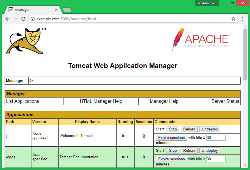 tomcat9-manager