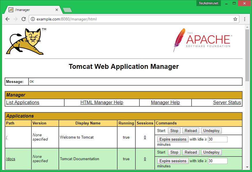 tomcat9-manager