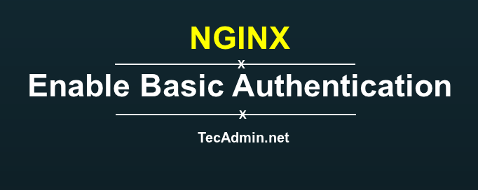 Basic Authentication on NGINX