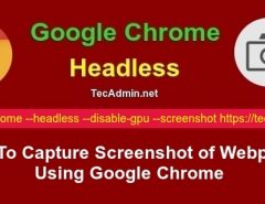 capture screenshot google chrome