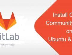 Install Gitlab