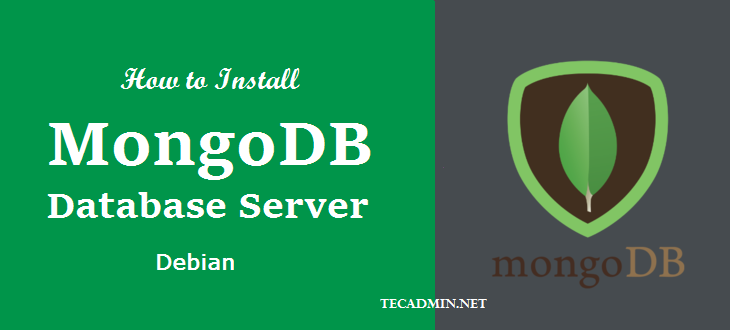 install mongodb server