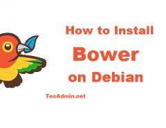 Install Bower on Debian