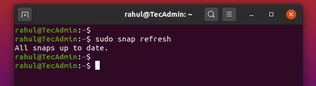 update snap package
