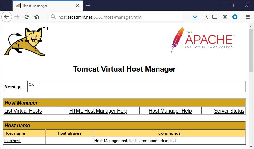 Tomcat host manager ubuntu 20.04
