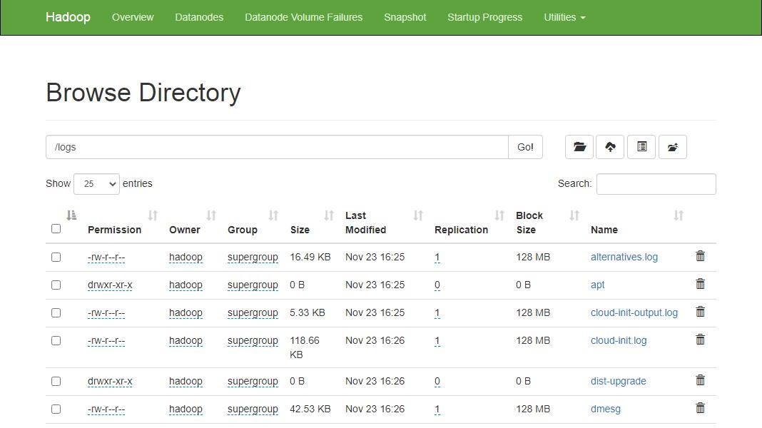 View Hadoop Filesystem on Ubuntu 20.04