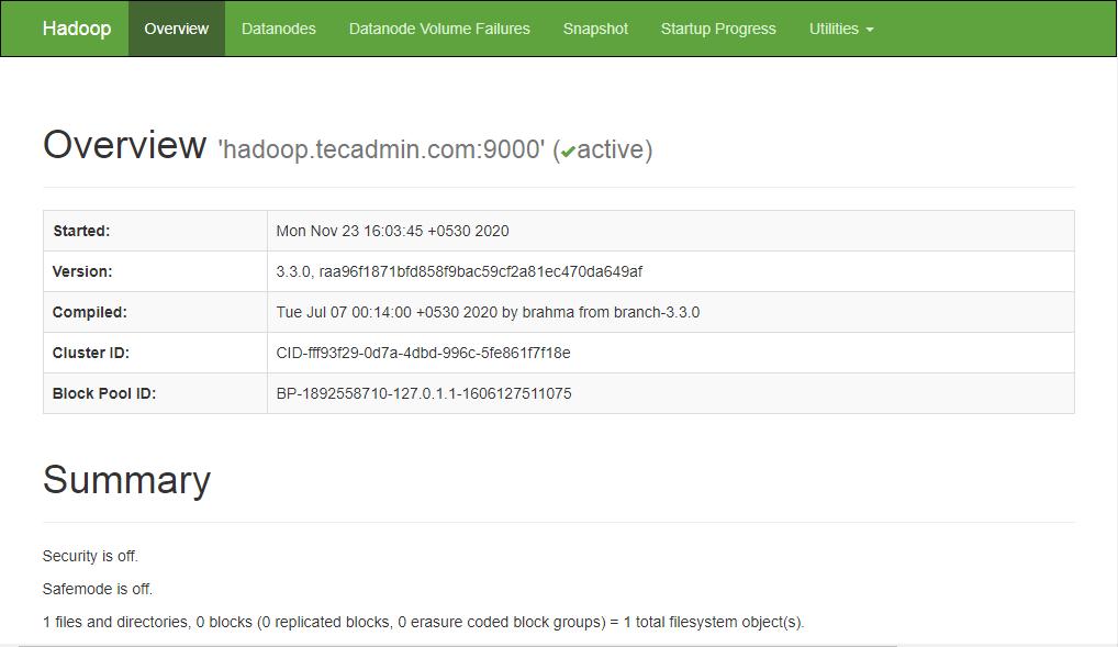 Working Hadoop Namenode on Ubuntu 20.04