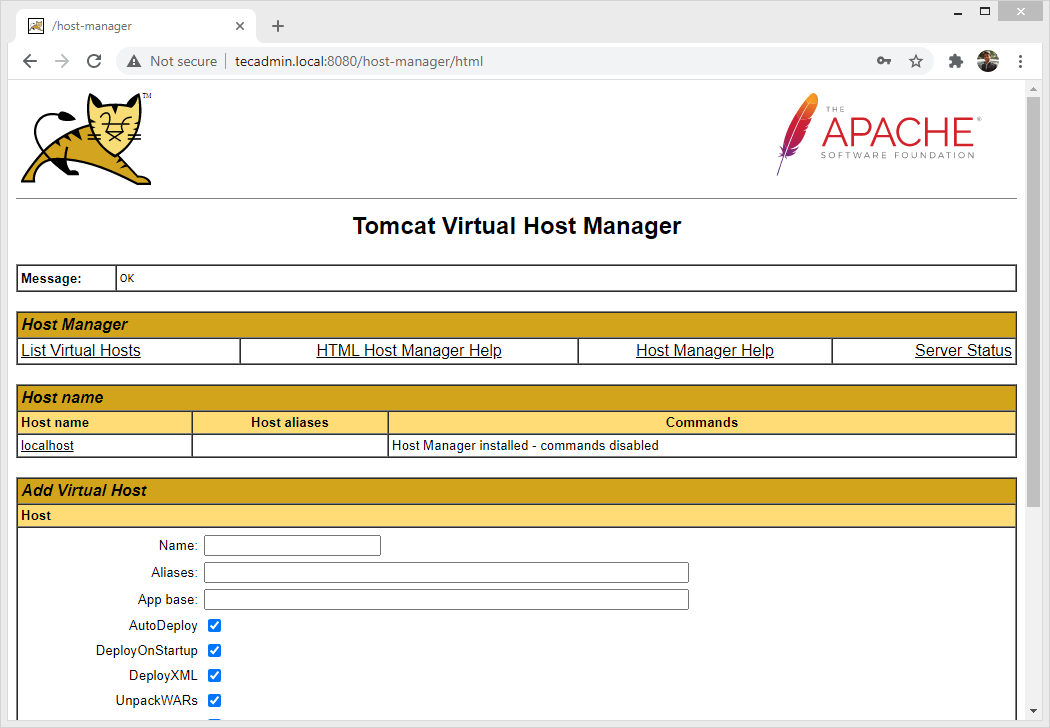 Tomcat 10 Host Manager Page