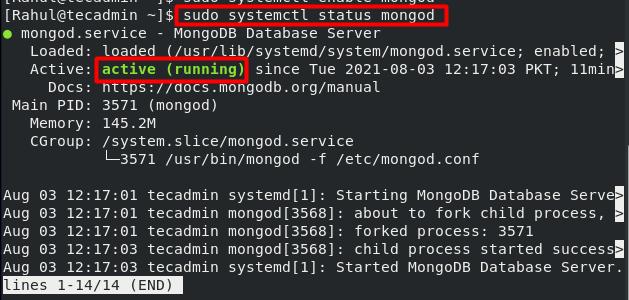 Check MongoDB Service