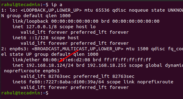 Check ip address in Linux